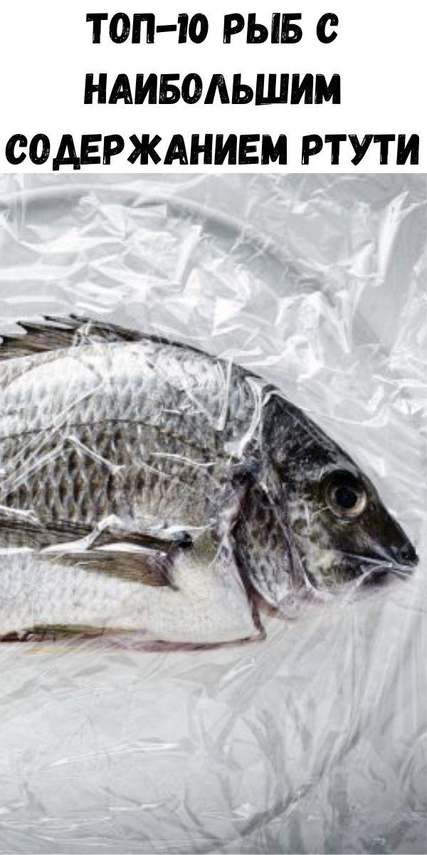 Топ-10 рыб с наибольшим содержанием ртути