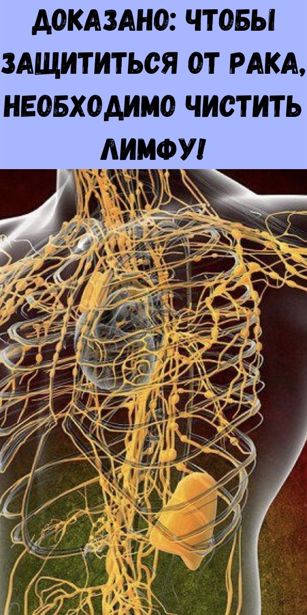 Доказано: чтобы защититься от рака, необходимо чистить лимфу!