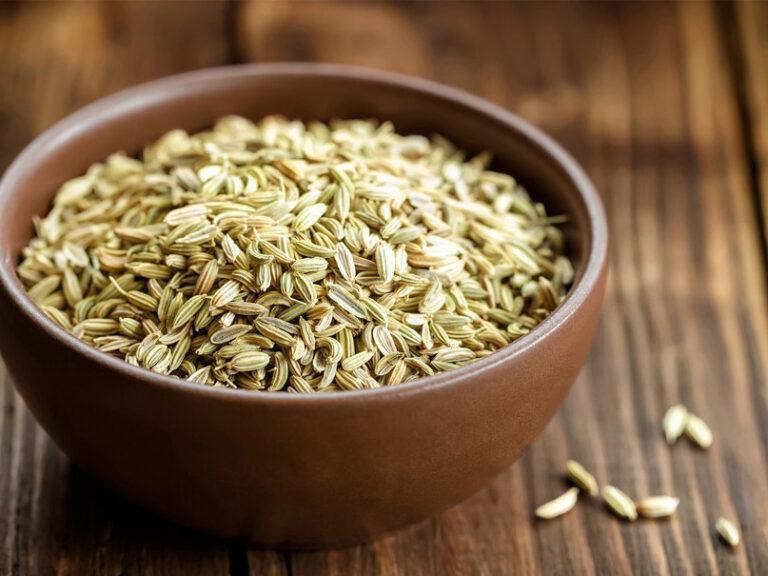 Семена укропа: польза и вред, лечебные свойства ...