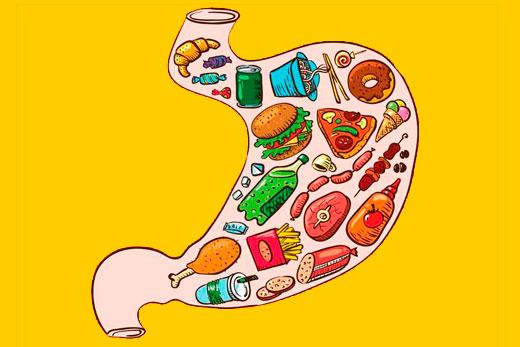 Сколько времени занимает переваривание различной пищи и почему вы должны это знать