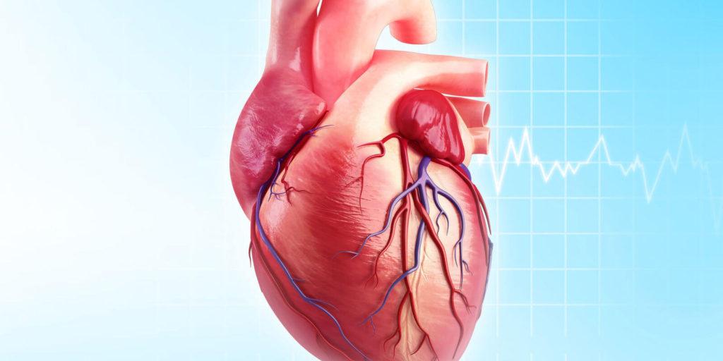 Как правильно сидеть, чтобы избежать проблем с сердцем?