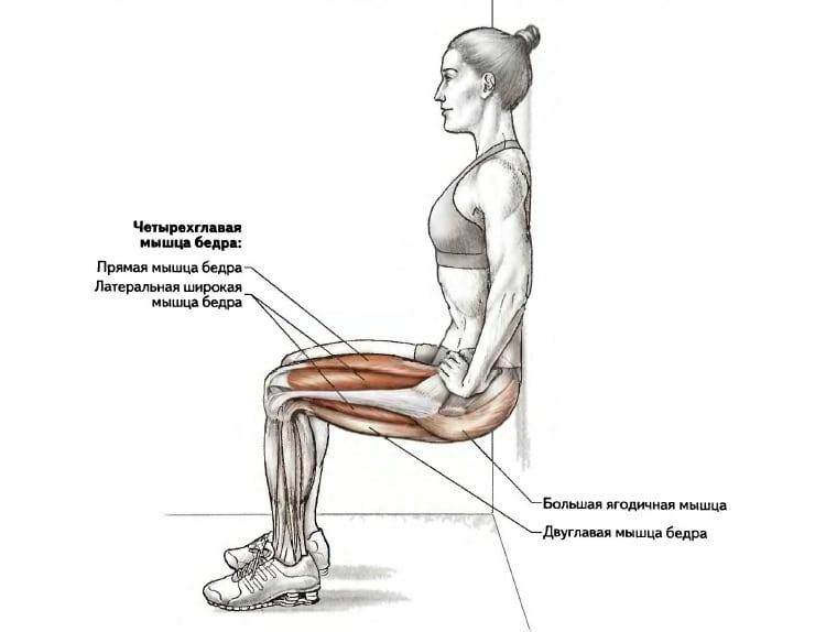Упражнение «стульчик у стены»: избавит от лишнего веса, укрепит ноги и ягодицы