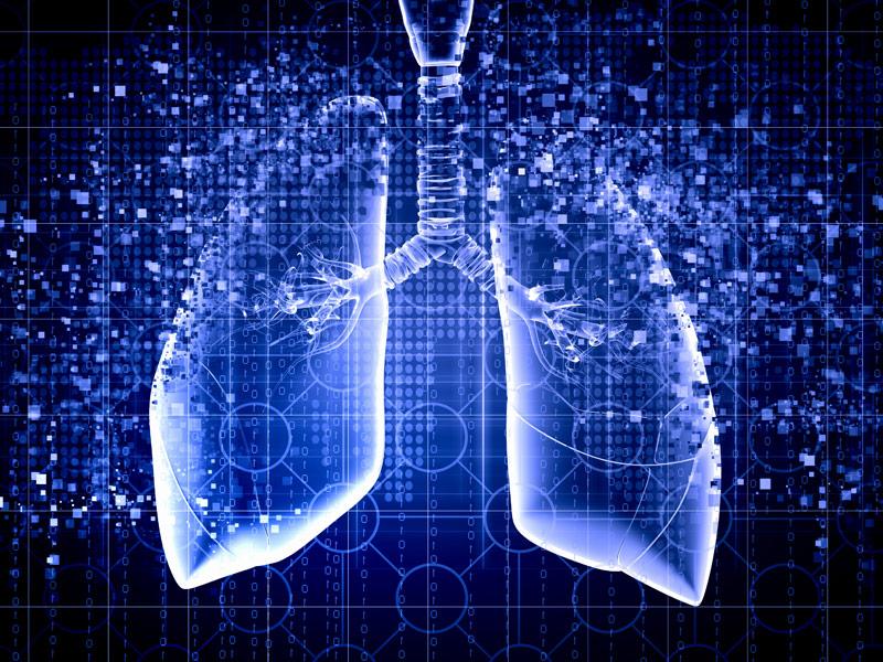 Какой орган отвечает за выведение жира из организма