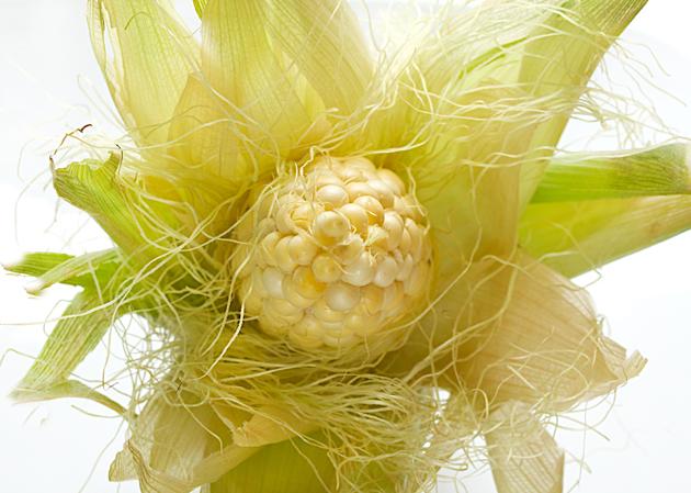 Кукурузные рыльца для похудения, применение и польза